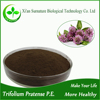 Red clover extract/trifolium pratense extract powder with Isoflavones 20%