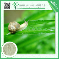 High Quality Cheap Custom herbal extract / 100% pure snail extract