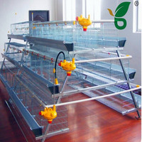 Factory new design metal chicken house with auto feeder for large chicken farm