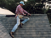 roof building material/asphalt shingle/roof tiles Good quality& Low price