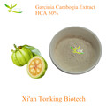 Natural India raw material 60% HCA garcinia cambogia extract