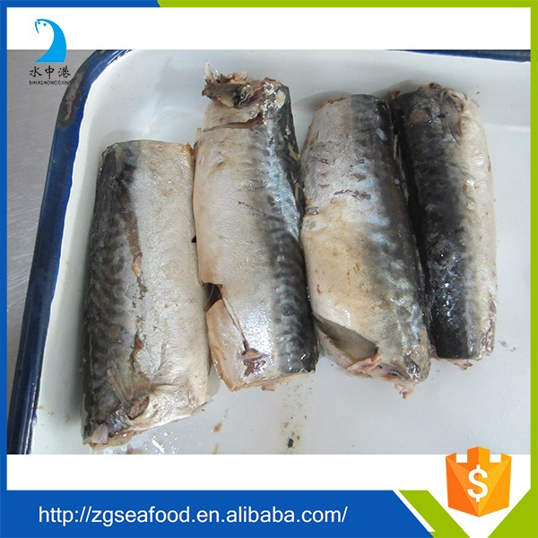 Various types of canned fish mackerel fish in salt water