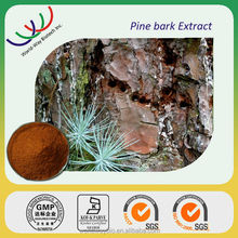 GMP supplier natrual herb 95% Proanthocyanidins high quality pine bark extract