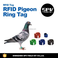 Shenzhen Factory Wholesale 125KHz RFID Pigeon Ring Tag for Animal Tracking