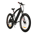 Satisfying price ebike electric fat bike 32km/h intelligent brushless controller