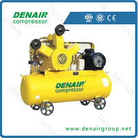 DENAIR 100psi oil free seris piston air compressor with gas tank