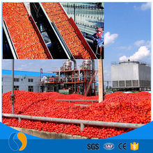 Tomato paste aseptic packing machine processing plant