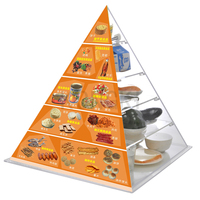Health Diet clear plastic pyramid with simulated food model