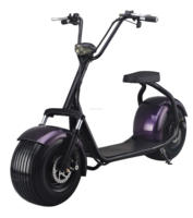 2 Wheels 1000W City Mobility Citycoco Brushless adult Electric scooter