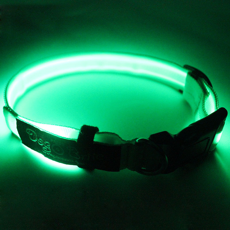 new design led collars for dogs dog sex in china