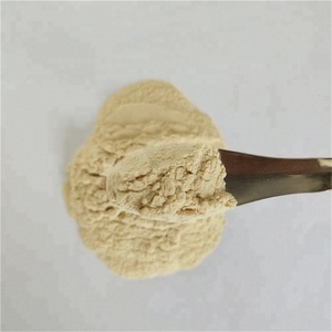 Food Grade Pumpkin Seed Oil Powder From Chinese Supplier