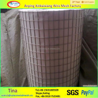 best professionnal galvanized welded wire mesh, square welded wire mesh, Gi Welded Wire Mesh
