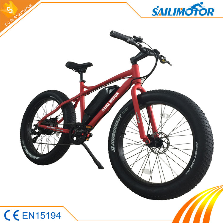 New fashion elektric bike with CE certificate