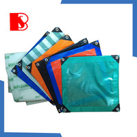 baosheng pe Tarpaulin,clear plastic cover PE tarpaulin sheet,waterproof and fire resistant tarpaulin rolling fabric