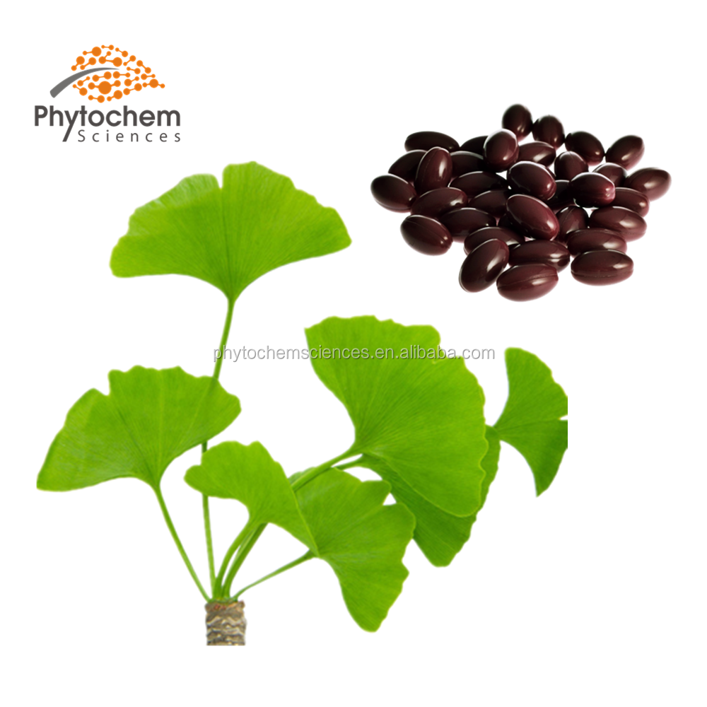ginkgo leaves powder extract for capsules