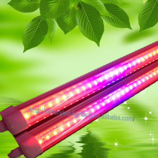 High output voltage AC 85-265V T8 model 8ft led grow tube light