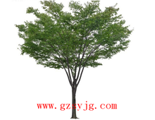 guangzhou factoey sales top quality fake fiberglass artificial beech tree for decoration