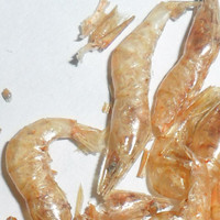 Eco-Friendly,Stocked Pet Food For Fish Sun Dried Small Shrimp Fish Feed
