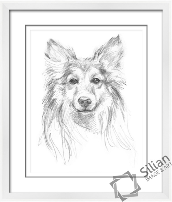 Newest black and white pencil animal sketch paintings
