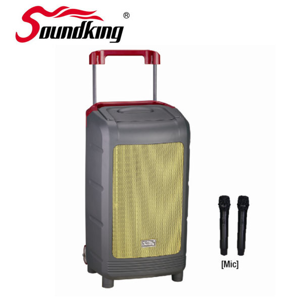 WI08D-1 Multifunction Portable PA Speaker System