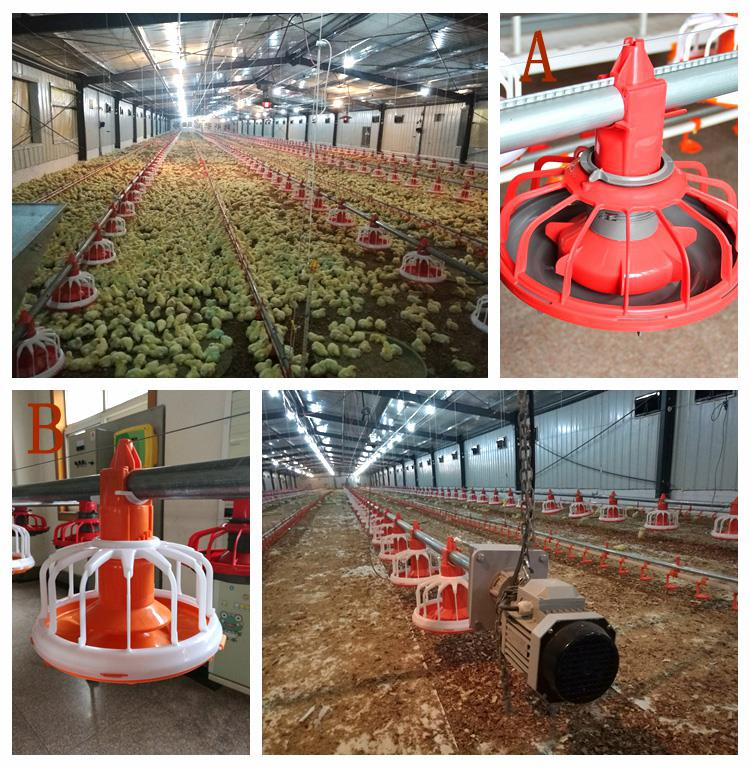 Advanced Poultry Farming Equipment With Commercial Environmental Control Shed