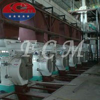 FCPM Series wood pelletizer machine