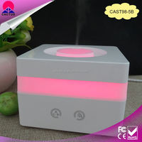 Portable mini humidifier for hotel use for home decoration
