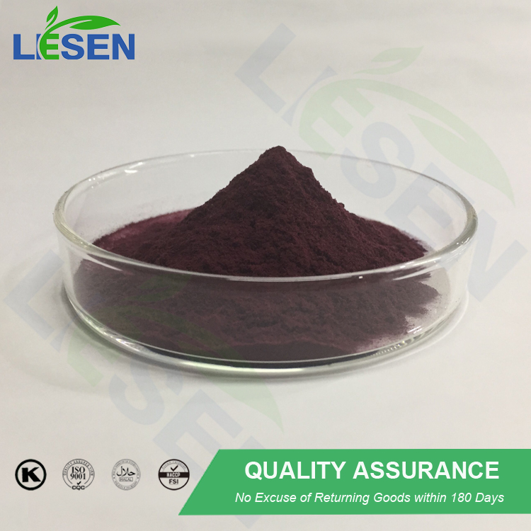 Good quality Acai Berries Extract/acai powder