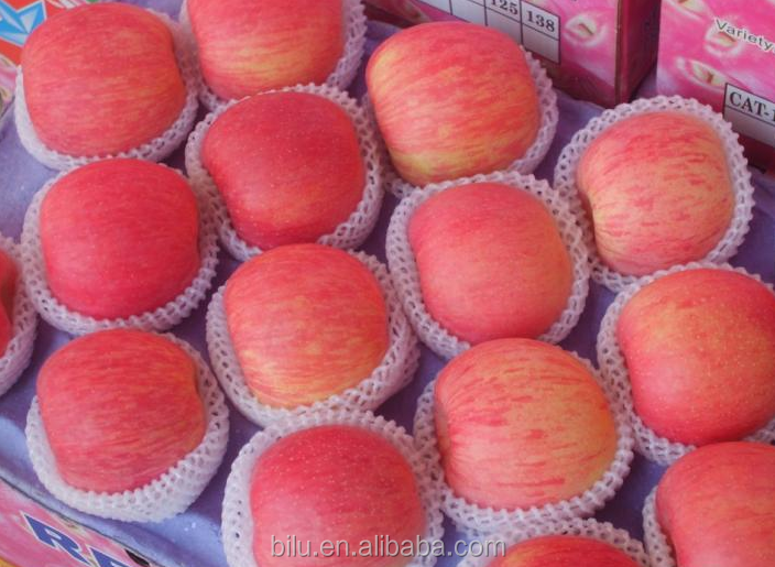 Super Quality Good Taste Qinguan Apple From China