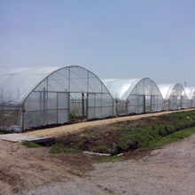 agricultural used poly film tunnel greenhouse for planting