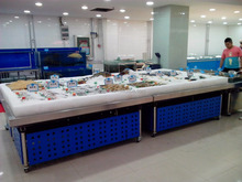 APEX custom make commercial supermarket restaurant stainless steel seafood frozen display table cooler