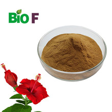 hibiscus extract/hibiscus concentrate powder/hibiscus flower