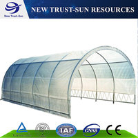 Cheap Chinese Tunnel Plastic Film Agriculture