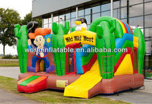 Customized Air Indoor/Outdoor Inflatable Combo
