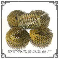 common nails coil nails .099 x 2 1/2'' China supplier
