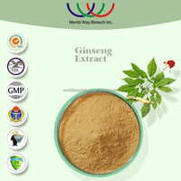 Free sample Chinese factory Natural herbal extract powder ginsenosides HPLC ginseng root,panax Ginseng extract