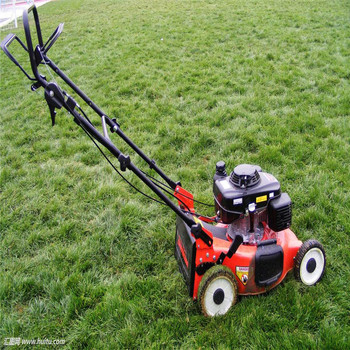 Chinese high quality grass cutting lawn mower with fashion design
