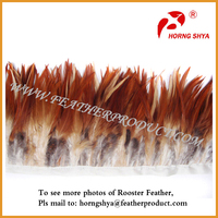 Long Grizzly Rooster Feather for Hair Sale