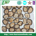 dried mushroom 2015 new crop