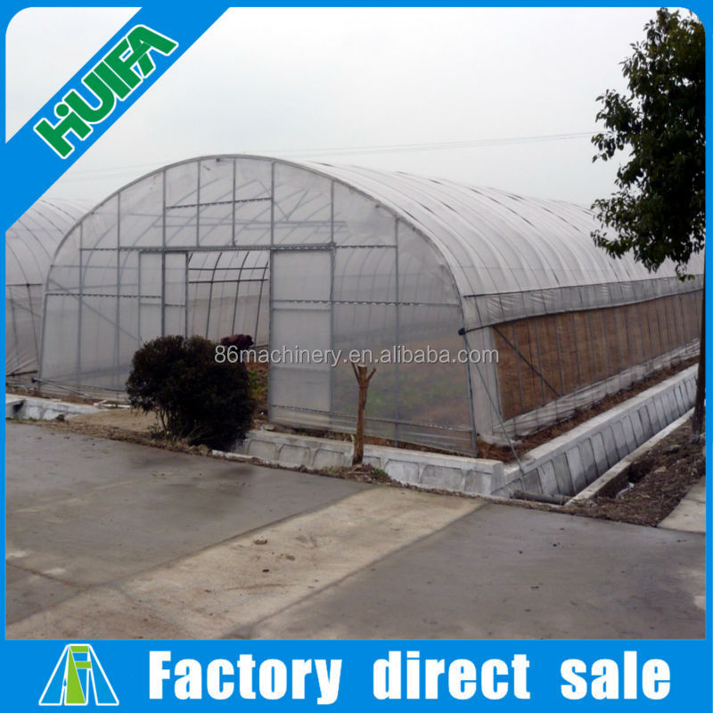 100x8m small size and film cover material low cost greenhouse for sale