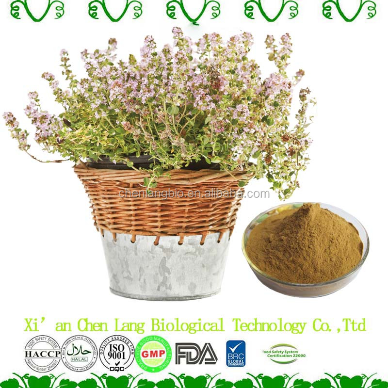 Best Price High Quality Pure Natural Thyme Extract