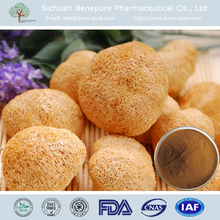nutrition food 10% 20% 30% 40% Polysaccharide monkey head mushroom powder
