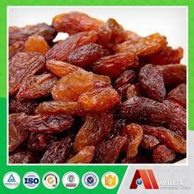 wholesale cheap dried fruit importers