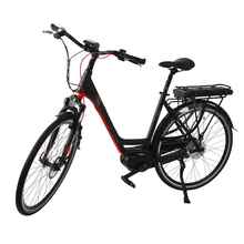 Electric Bike/Bicycle Motor for 36V Low Price Electric City Bicycle