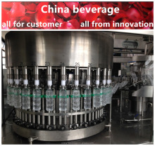 Mineral Water Packed Plant, Automatic Drinking Mineral Water Bottling Machine