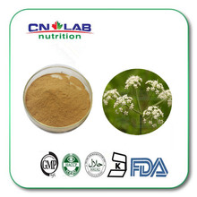 Pure Natural Caraway Seed Extract 10:1