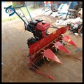 Hand push petrol engine teff harvest machine