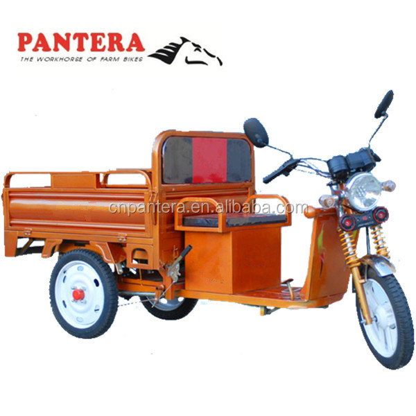 PT-ET Cheap Cargo 1000w Chongqing 3 Wheel Electric Tricycle