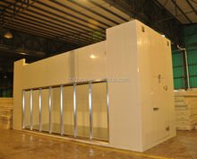 Commercial deep freezer storage cold room for wine and all foods