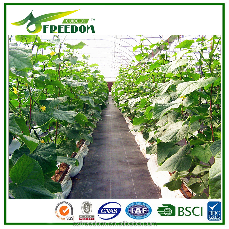 Changzhou freedom ground cover for protecting the seedling for sale